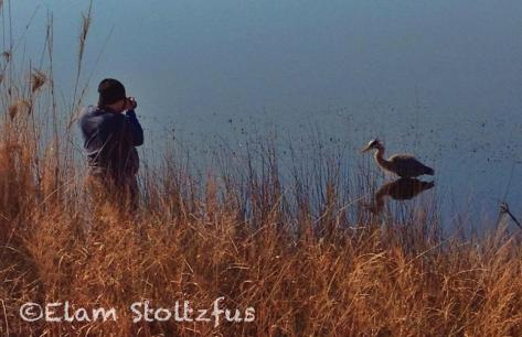 The author taking a picture of the heron. Image by Elam Stoltzfus.